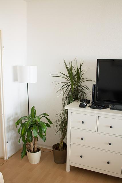 Wohnzimmer Kommode Pflanzen kleiner